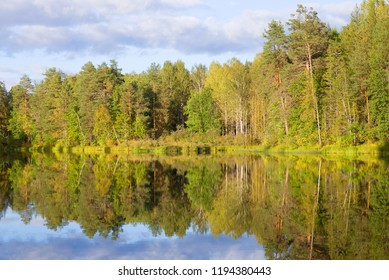Sunny September evening on a forest lake. Kostroma region, Russia