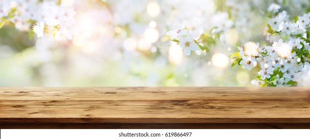 Sunny spring background with white flowers and empty wooden table for a concept