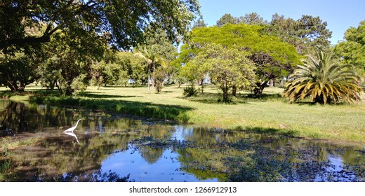 A sunny spring day in Marinha do Brasil park, in the brazilian city of Porto Alegre.