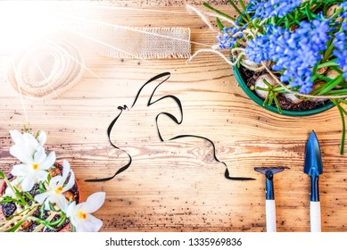 Sunny Spring Flowers, Illustration Of Easter Bunny, Wooden Background
