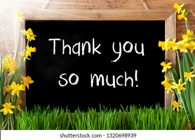 Sunny Spring Narcissus, Chalkboard, Text Thank You So Much