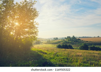Sunny summer landscape.Beautiful view of green hills,fields and pastures.Nature of Tula region,Russia.