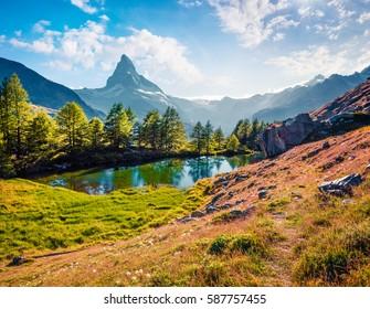 Sunny summer morning on the Grindjisee lake. Great view of  Matterhorn (Monte Cervino, Mont Cervin) peak, Swiss Alps, Zermatt location, Valais canton, Switzerland. Beauty of nature concept background.
