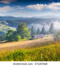 Sunny summer mourning in the foggy mountains. Abandoned house in the Carpathian village Kvasy, Ukraine, Europe.