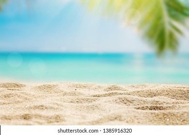 Sunny tropical beach with palm trees background, sunlight on sand, copy space