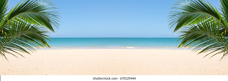 Sunny tropical beach panorama with copy space between palm trees