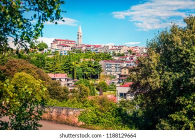 Sunny view of small town Vrsar (Orsera) and St. Martin Catholic Church. Colorful summer scene of  Croatia, Europe. Traveling concept background. Picturesque Mediterranean landscape.