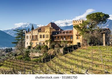 Sunny view of vineyards valley of castle Ramets near Merano, Trentino-Alto-Adige region, Italy.