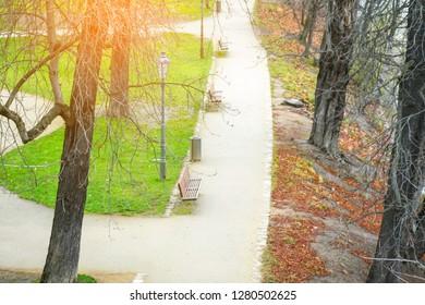 Sunny walking park
