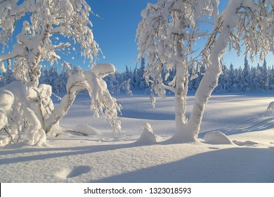 Sunny winter day in Finland