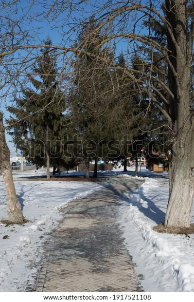 sunny-winter-weather-city-sidewalk-600w-