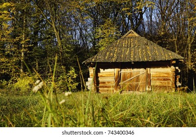 A sunny wooden house with a triangular roof standing in a field on a green grass. In the foreground there are autumn wildflowers. Pirogovo, Kiev (Kyiv), Ukraine
