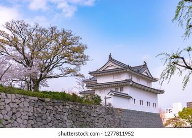 Sunpu Castle Tatsumi-Yagura with cherry blossom, Shizuoka, Japan.