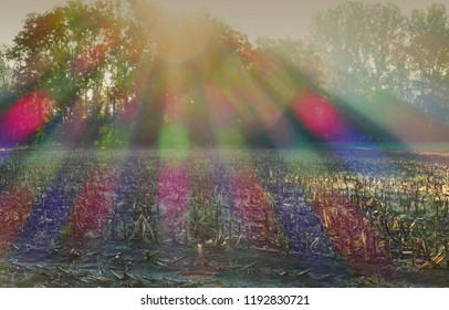 sunrays with chromatic aberration