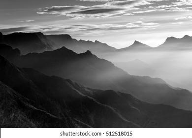 Sunrays with clouds resting  on fresh green tea plantation at sunrise in Munnar, Kerala, India, Circa October 2016
