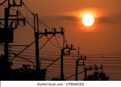 The sunrise above silhouette the electricity pole