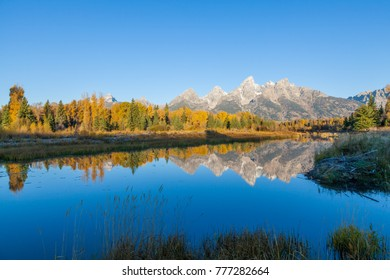 Sunrise Autumn Reflection in the Tetons