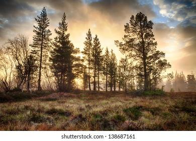 Sunrise in Autumn in Sweden
