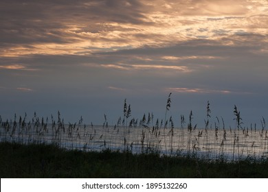 Sunrise at the beach with sea oats
