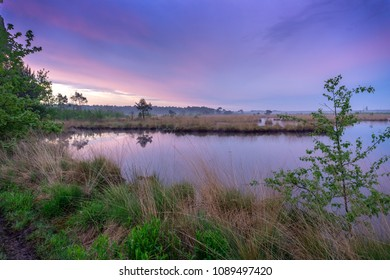 sunrise with beautiful colors in the sky.Taken on The Kalmthoutse Heide in Belgium