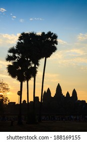 Sunrise behind Angkor Wat temple and palms