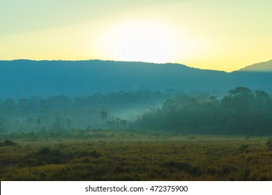 Sunrise behind the mountain at Khao Yai national park (a unesco world heritage site), Thailand.