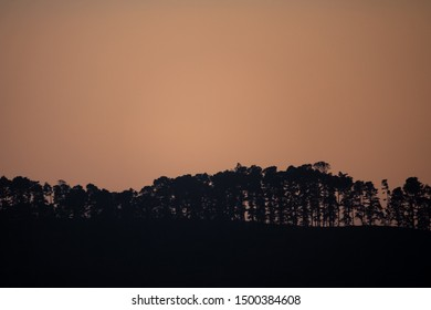 Sunrise behind mountain with trees in back light, text space at the top
