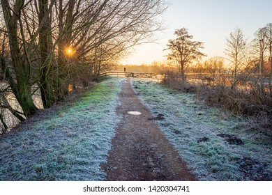 Sunrise between the leafless branches of trees and shrubs in the Markdal nature reserve near the Dutch city of Breda, North Brabant. It is early in the morning of a cold but sunny day in wintertime.