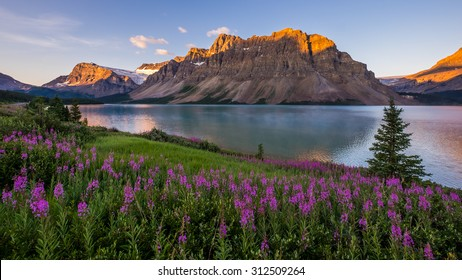 Sunrise at Bow Lake in Banff National Park.