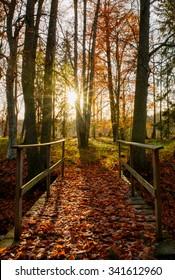 Sunrise bridge leading into the autumn park
