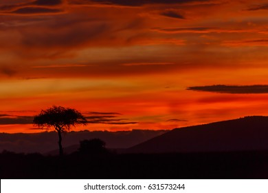 Sunrise with a burning sky in Masai Mara, Kenya