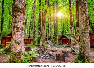 Sunrise in camping of Biogradska Gora National Park, Montenegro - Shutterstock ID 1615429786