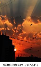 sunrise clouds city