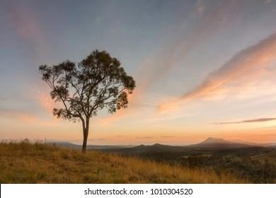 Sunrise at Cunninghams Gap