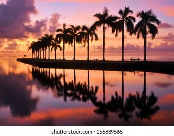 Sunrise at Cutler Bay near Miami, Florida / Beauty and the Beach