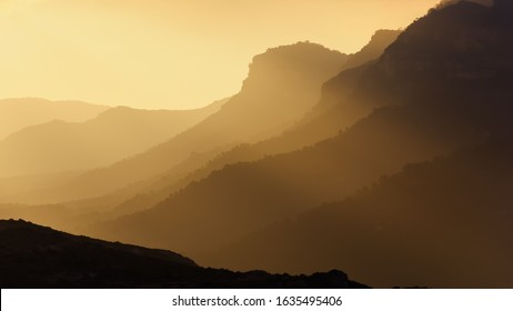 Sunrise with the fog. Neutral screensaver.