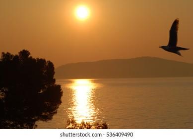 Sunrise at the french coast