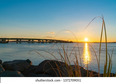 Sunrise  glows across Tauranga harbor with curving lines of harbor bridge from rocky foreshore