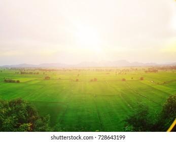 sunrise in the green field
