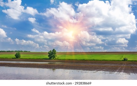 sunrise in the green field with blue clouds Desktop