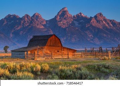 Sunrise of historic Moulton Barn in the Grand Teton National Park, Wyoming, USA.