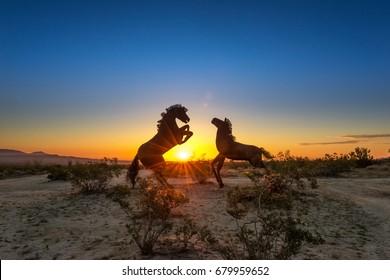 Sunrise with Horses