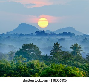 sunrise in the jungles of Sri Lanka