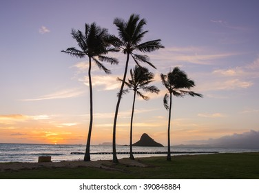 Sunrise at Mokoli?i -  Kualoa Regional Park, Oahu, Hawaii