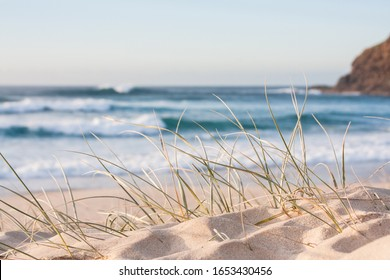 sunrise light on white sand beach with dune grass in Australia with turquoise surf waves of the pacific ocean
