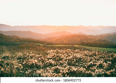 Sunrise at Max Patch in the Blue Ridge Mountains in Fall