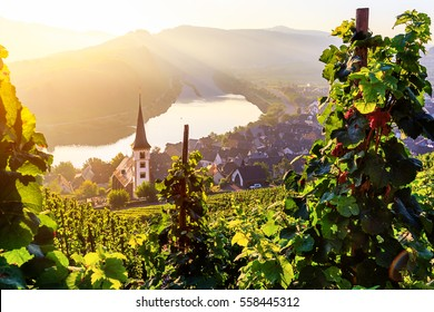 Sunrise at the moselle river bend over the village Bremm