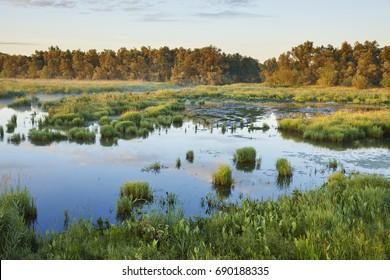 Sunrise in national wetlands park 'Biesbosch' near the town of 'Werkendam', Netherlands