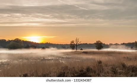 Sunrise nature reserve Kampina