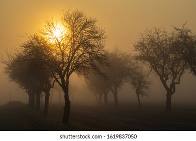 sunrise near Znojmo, South Moravia, Czech Republic - Shutterstock ID 1619837050
